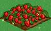 Strawberry extra100.png
