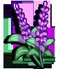 Sage-icon