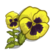 Yellow Pansy-icon