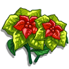 Holiday Poinsettia-icon