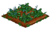 Forget-Me-Not 66.png