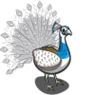 Pied Peacock-icon.png