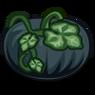 Black Pumpkin-icon.png