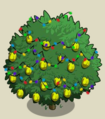 Alma Fig Tree6-icon.png
