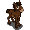 Exmoor Pony Foal-icon
