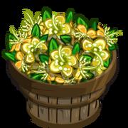 Yellow Myrtle Flower Bushel-icon