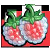 Wan Raspberry-icon