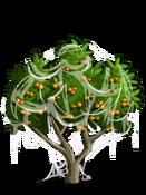Apricot4-icon