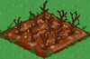 Cotton withered.png