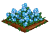 Forget-Me-Not extra100.png