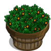 Imperial Tea Bushel-icon