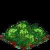 Square Melon 100