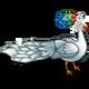 Feather Bride Peacock-icon