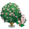 Snowberry Tree-icon.png