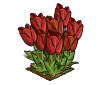 Perfect Red Tulip-icon