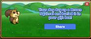 Brown Squirrel Dogtreat Reward