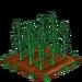 Bamboo 66