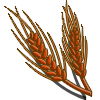 Red Wheat-icon.png