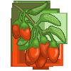 Goji Berry-icon