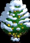 Jackfruit Tree8-icon