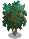 Angel Red Pomegranate Tree2-icon