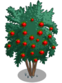 Angel Red Pomegranate Tree2-icon.png