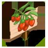 Goji Berry Mastery Sign-icon