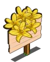 Daylily Mastery Sign-icon
