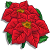 Poinsettia-icon