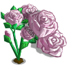 Rose Quartz Bloom-icon