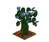 Wither Bunch Morning Glory-icon