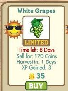 Whitegrapes