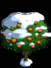 Orange8-icon