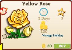 Yellow Rose Market Info (December 2012)