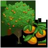 Mandarin Tree-icon