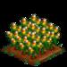 Candy Corn 100