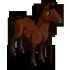 Cleveland Bay Horse-icon