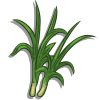 Lemongrass-icon