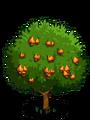 Wild Cashew2-icon