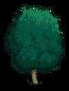 White Walnut1-icon