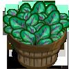 Violet Vein Spinach Bushel-icon