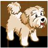 Cream Terrier-icon