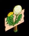 Dandelion Mastery Sign-icon