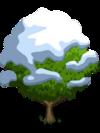 Asian Pear Tree7-icon