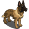Dutch Shepherd-icon.png