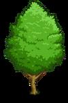 Ginkgo1-icon