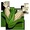 White Corn-icon