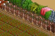 Clumsy Reindeer On My Farm