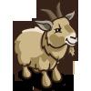 Pygmy Goat-icon