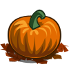 Pumpkin (Collectable)-icon